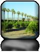Winiarnie środkowej Kalifornii