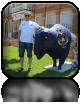 Pierwszy bizon przez nas napotkany...