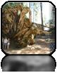 Fallen Sequoia, Wojtek się o nią oparł i tak już to zostawiliśmy